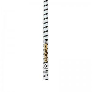 2021 Duotone Gold.90 SDM Mast